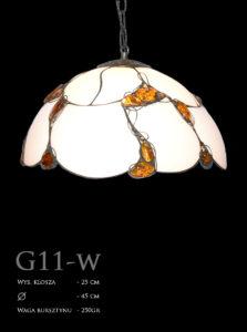 G11-w